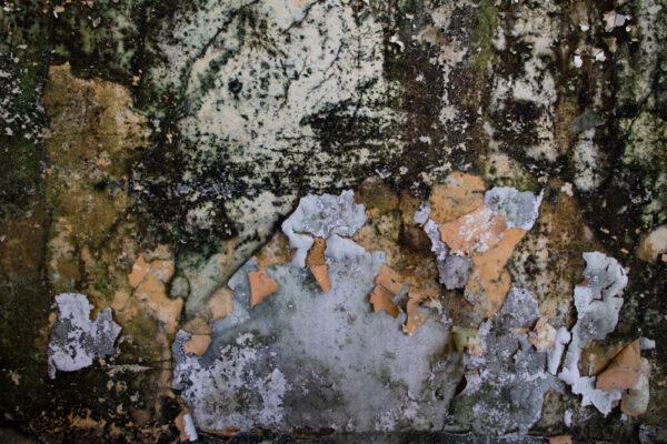red cross dettaglio muro